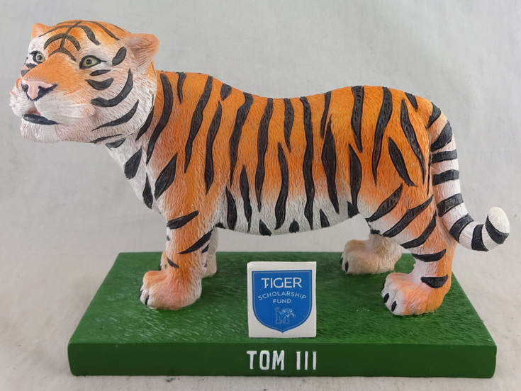 University of Memphis - Tom II Tiger 112447, 7in Bobblehead (1).jpg