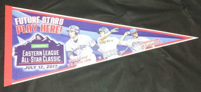 New Hampshire Fisher Cats - Pennant.jpg