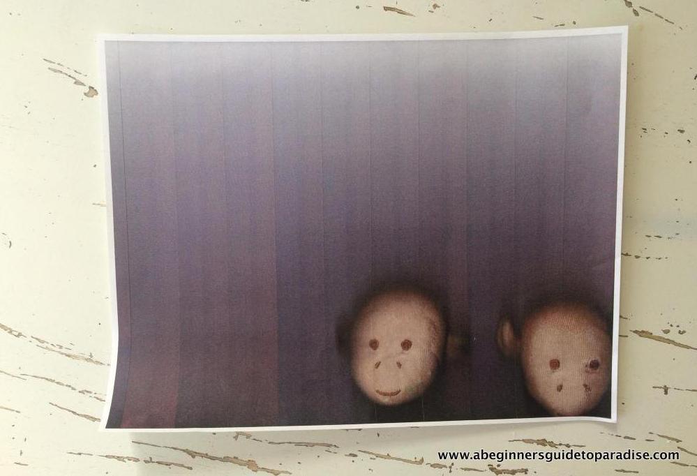 monkeyredux.jpg
