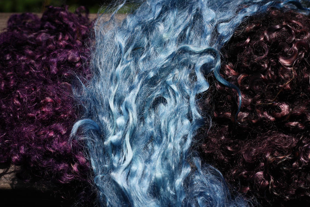 Wool dying (5 of 5).jpg