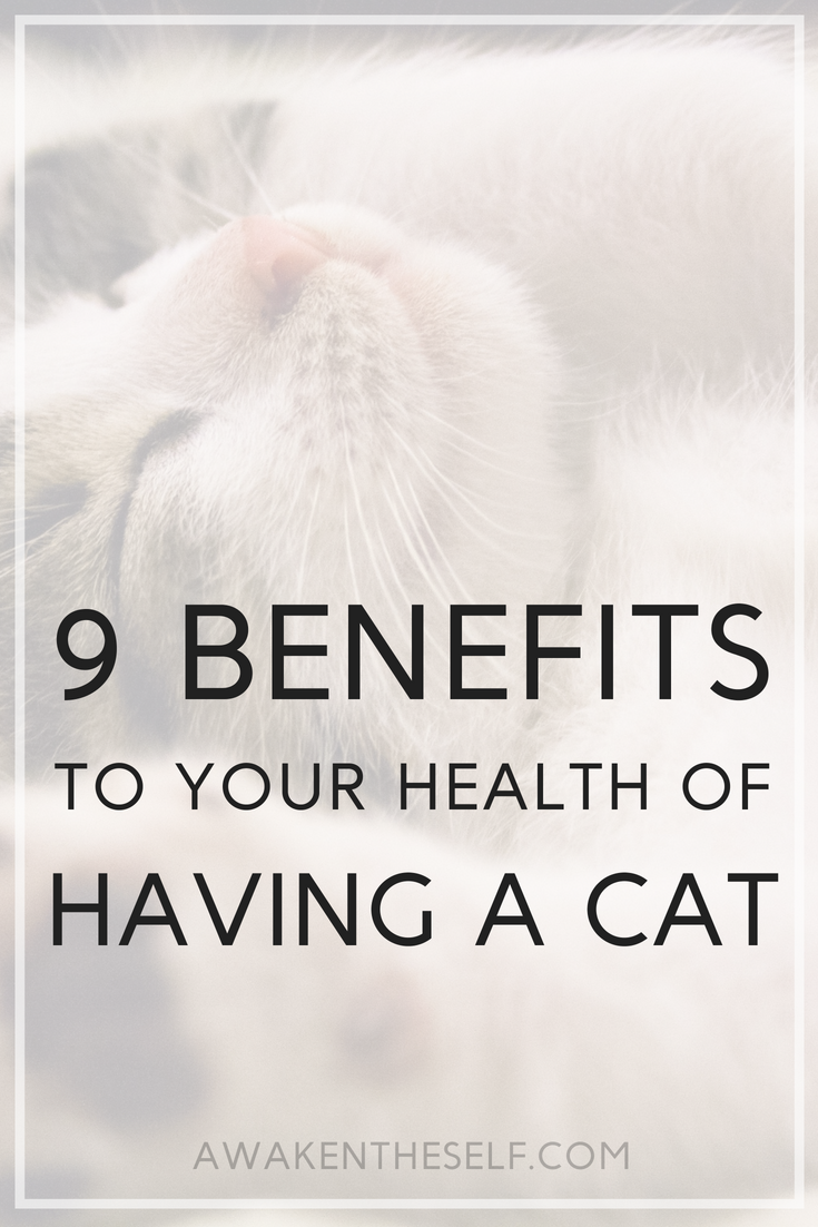 9 benefits to your health of having a cat.png