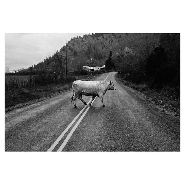 The Great Escape. Winthrop, WA  #leicam8 #leicacraft