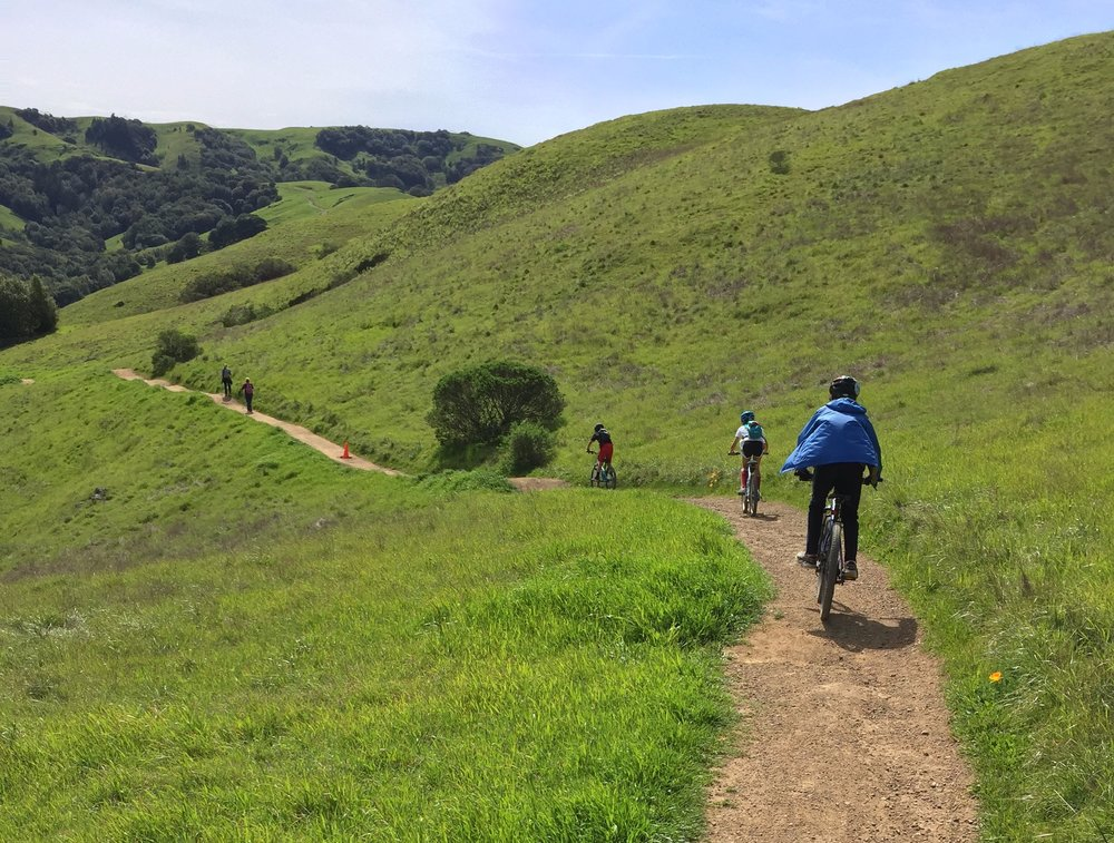 One of many beautiful trails Marin County has to offer.