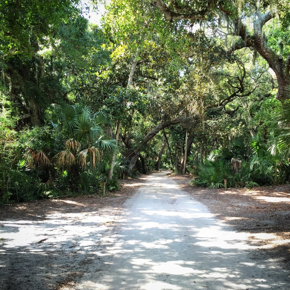 For our five year anniversary, my wife and I road tripped to Florida. Our first night was spent in a jungle swamp. It was great.