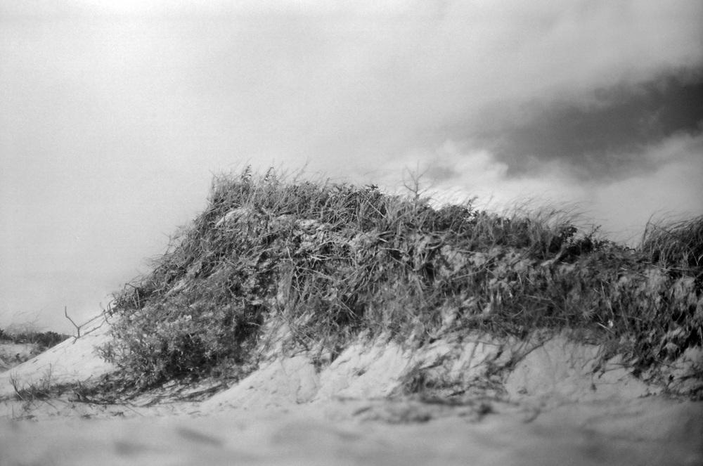 Paradis_Dune.jpg