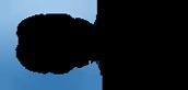 NOEI_logo.png