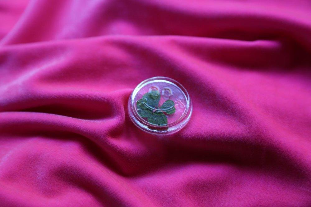 Happy go Lucky, 2013, resin, 4 leafed clover, velvet