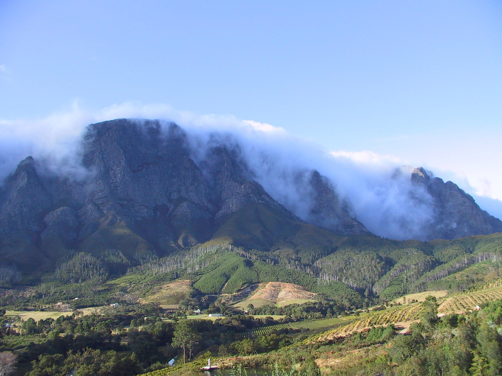 The view from the cellar is across to the majestic Olifantshoek. It is especially dramatic when under cloud, which inspired our white wine blend, Cloud Fall.