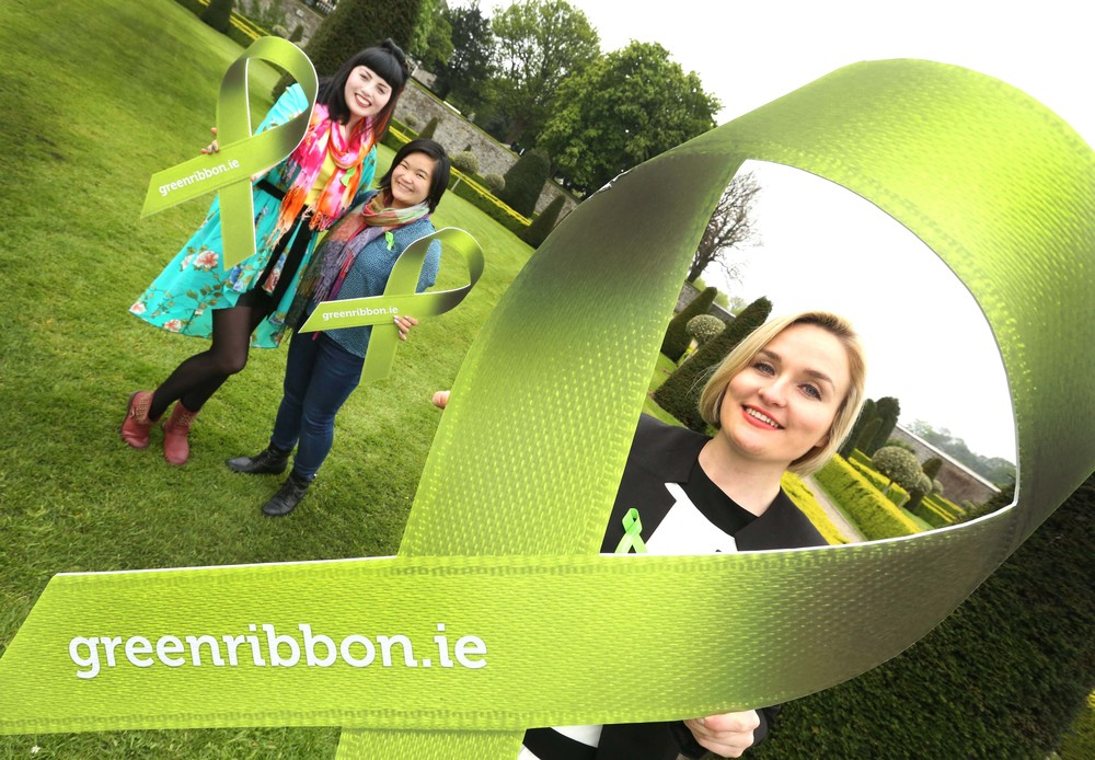 Launch of the See Change green Ribbon campaign