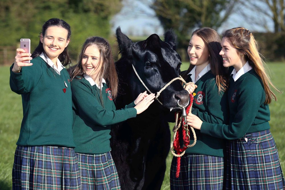 Students from Our Lady's School, Terenure were announced as the national winners of the Certified Irish Angus Beef schools competition.