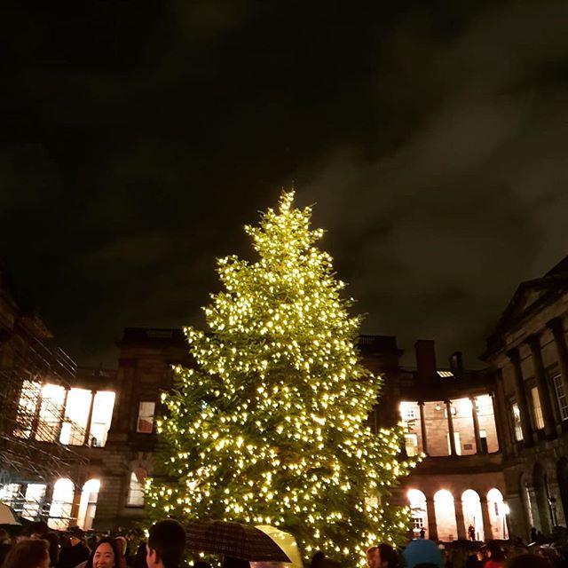 💚 a Christmas tree! First one of the season.  #christmastree #christmas #edinburgh #scotland