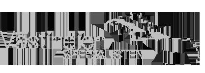 logo_vastindienspecialisten-grayscale.png