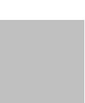 logo_wiresor-grayscale.png