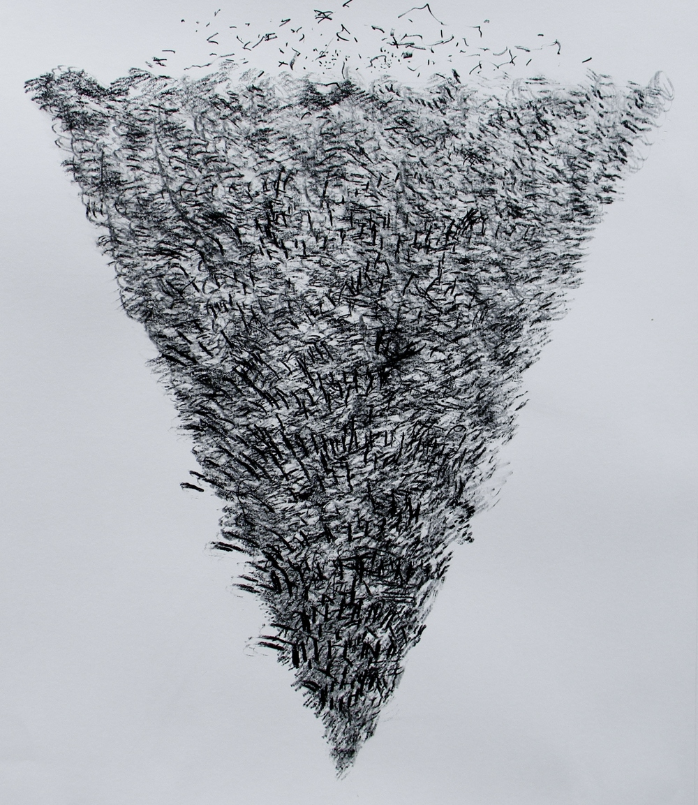 Early morning Birds over crops. 86 c 70cm. Chinagraph pencil and Graphite on paper..JPG