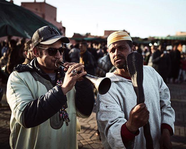 Keine 2 Stunden in Marrakech und ich hatte eine Giftschlange um den Hals hängen. #läuftbeimir mit den Jungs und deren 🐍 war auch nicht gut Kirschen essen! 🤦♂️ #1001nacht #orient #djemaelfna #orient #snake #picture #photographer #oriental #marketplace #entrance #marrakech #marokko #africa #traveltheworld #traveladdict #michaelhochfellnerphotography #people #placa #morgenland #shadow #sunset #visitmarocco #men #menwithstyle #walktheline #city #sony