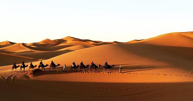 ... die schönste Zeit in der Wüste ist wenn die Sonne beginnt hinter dem Horizont zu verschwinden, da kommt für kurze Zeit diese einzigartige Stimmung auf... #karawane #neverstopdreaming #kamel #sunset #life #youonlyhaveone #desert #sahara #saharadesert #sand #animal #Wüstenkind #träumer #adventure #traveltheworld #photograph #staywild #stayfree #sky #evening  #visitmarocco #michaelhochfellnerphotogtaphy #roamtheplanet #roamtheworld #berber #kinderder90er #goodtimes #sundays