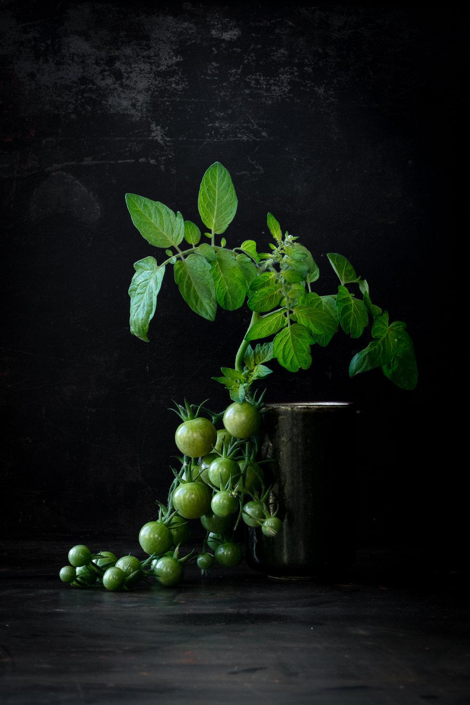 FHA-Tomates vertes-2A6A0931.jpg