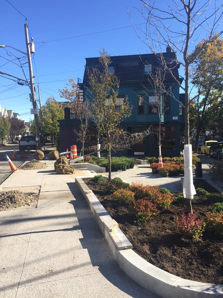 Luongo Square: trees and landscaping installed, October 2016
