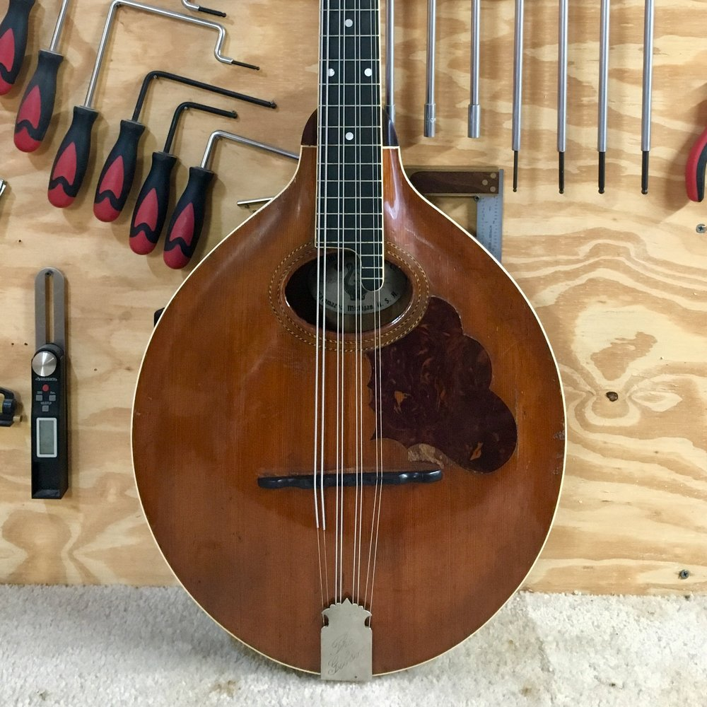 1907 Gibson Mandocello Restoration