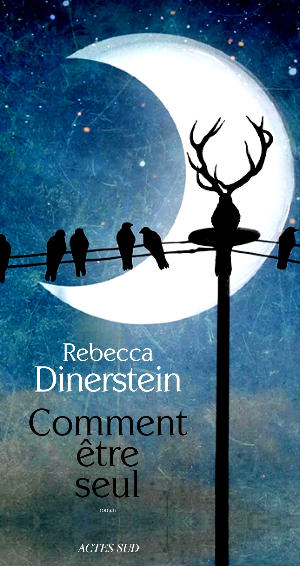 Dinerstein Rebecca - THE SUNLIT NIGHT (French cover).pdf.jpg