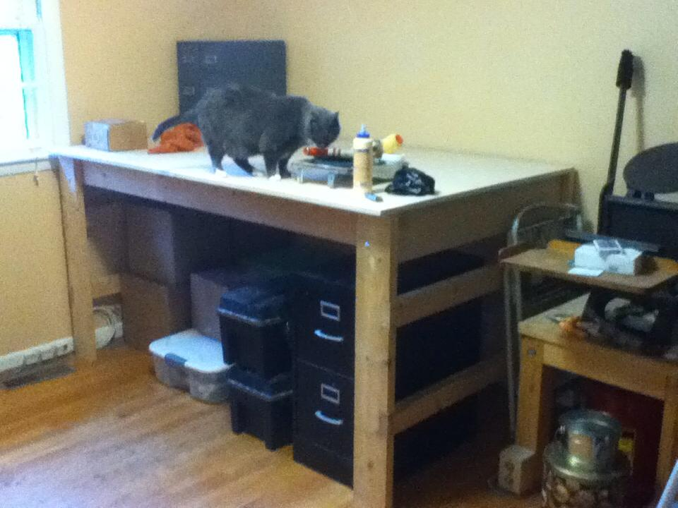 My humble home bindery/studio after painted walls and workbench building, but before shelf installation and months of binding to fill said shelves. Calie is weight-testing the workbench.