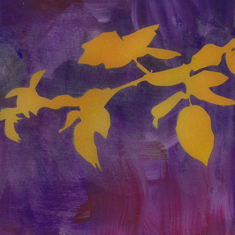 6x6_violet1.jpg