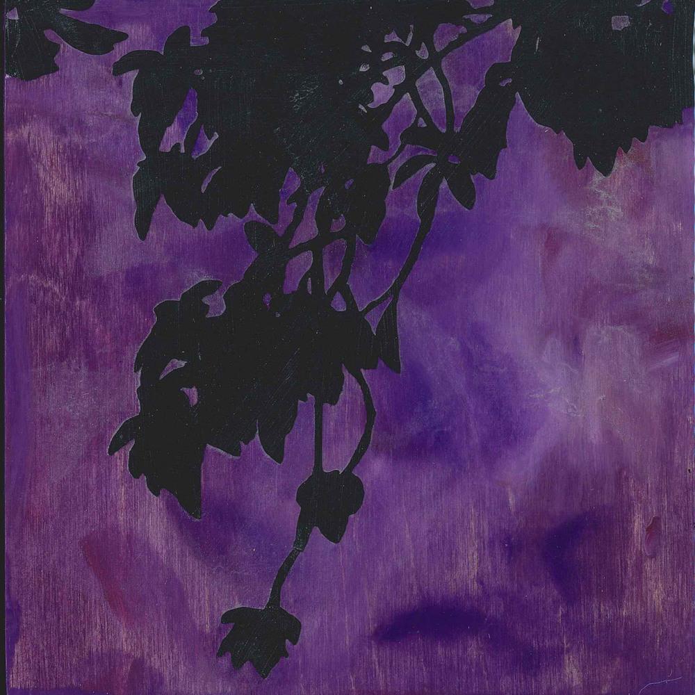 6x6_violet2.jpg