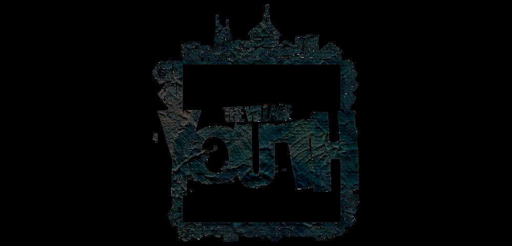 VillageYouth Logo wide.png