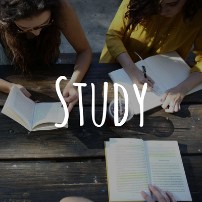 Study. - Choose an intentional Bible reading plan to guide you in daily Bible readings. We recommend using the daily