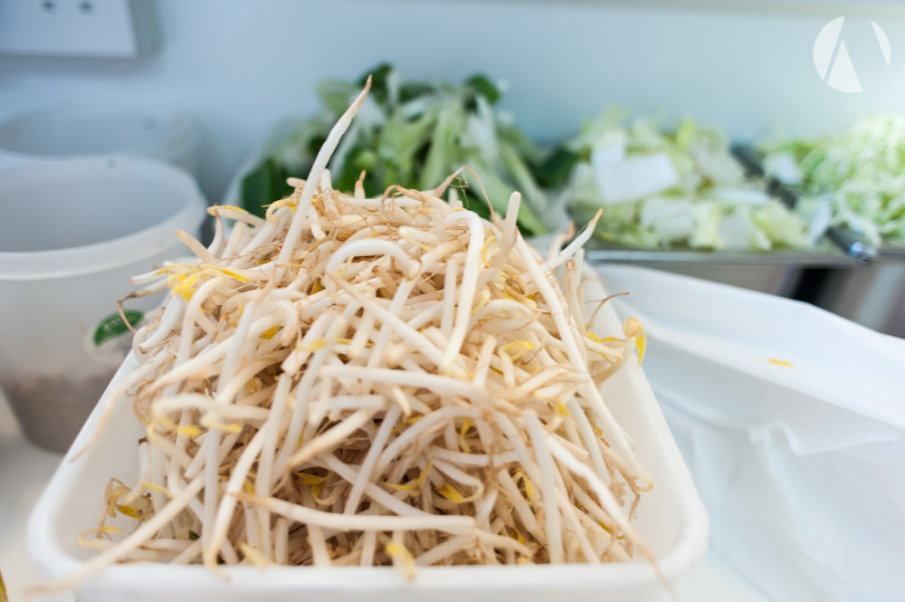Beansprouts ready for cooking