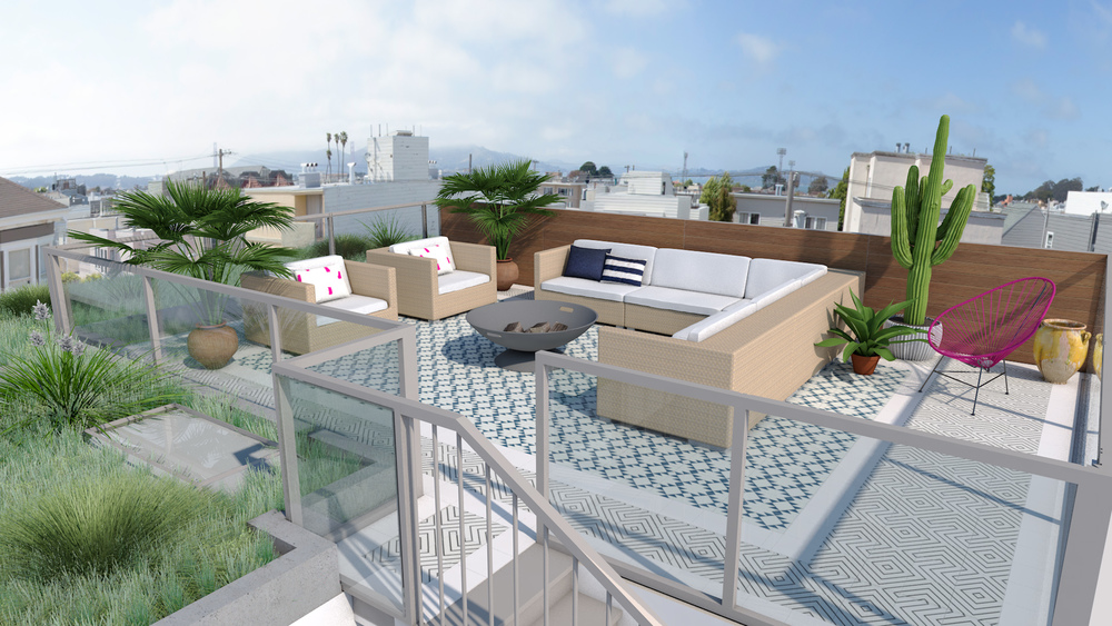 pacific_heights_roof_09.jpg