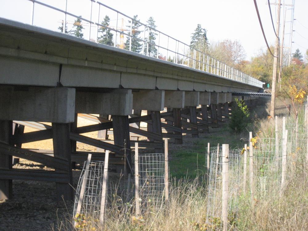 Tualatin River N Approach Rail.JPG