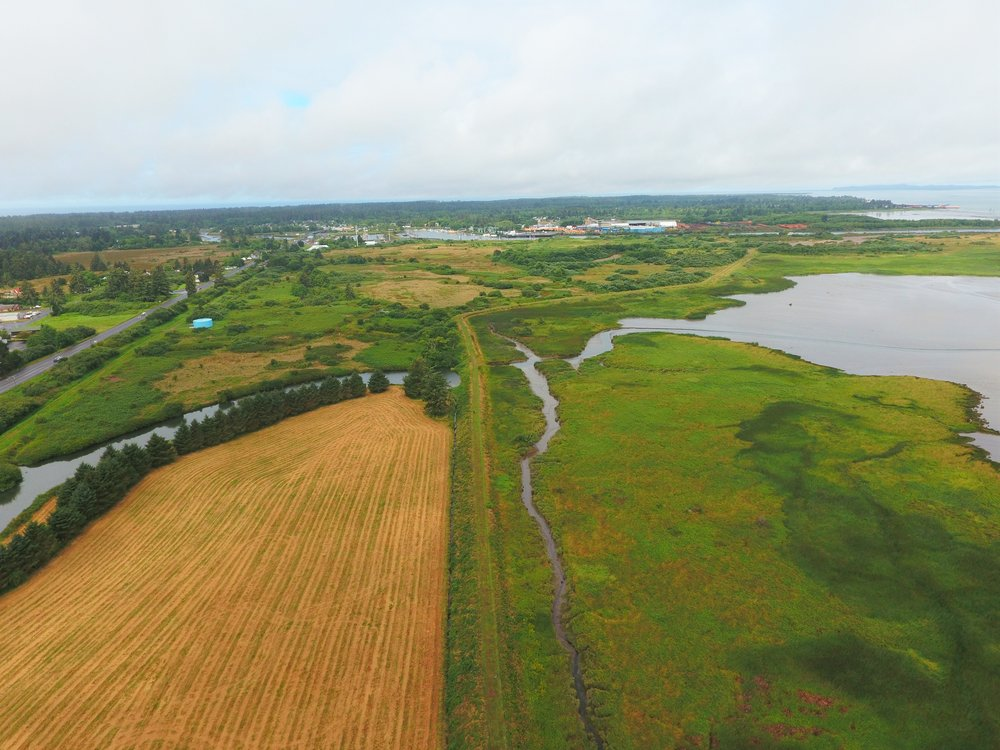 Port of Astoria East Bank Skipanon Setback Levee & Habitat Restoration | Clatsop County, Oregon