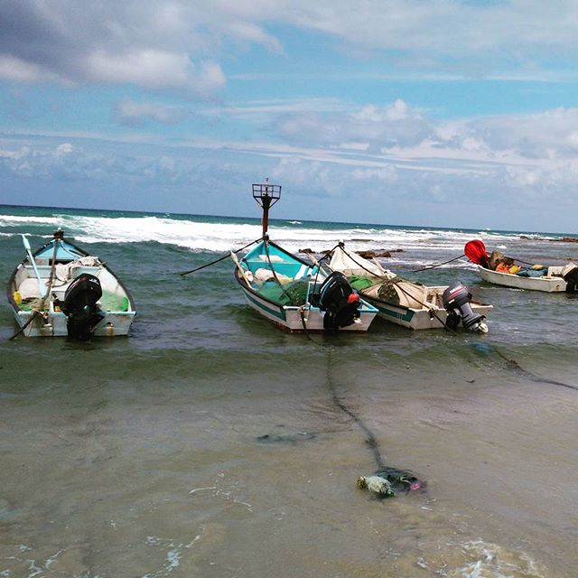Fisherman in Jisr al-zarqa wait for winds to die down before heading out. One of the poorest cities in Israel, and the last fully Arab city bordering the sea #palestine #apartheidisrael #apartheid #fishing #fishinglife #jisralzarqa