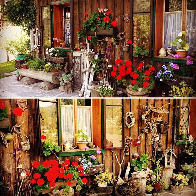So beautiful 😍 #flowerlover #altaussee #holidaytime #ausseerland #enjoyingeverymoment