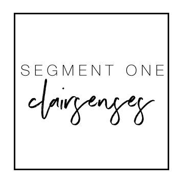 segment1.jpg