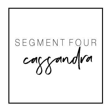 segment4.jpg