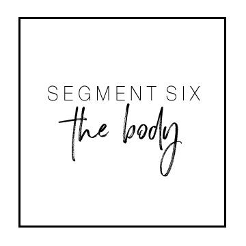 segment6.jpg
