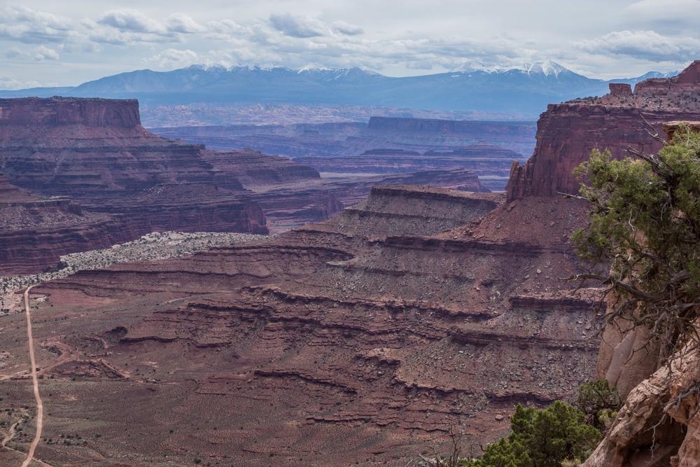 Then to Canyon Lands Photo by Jeff Fox (@foxonarock)