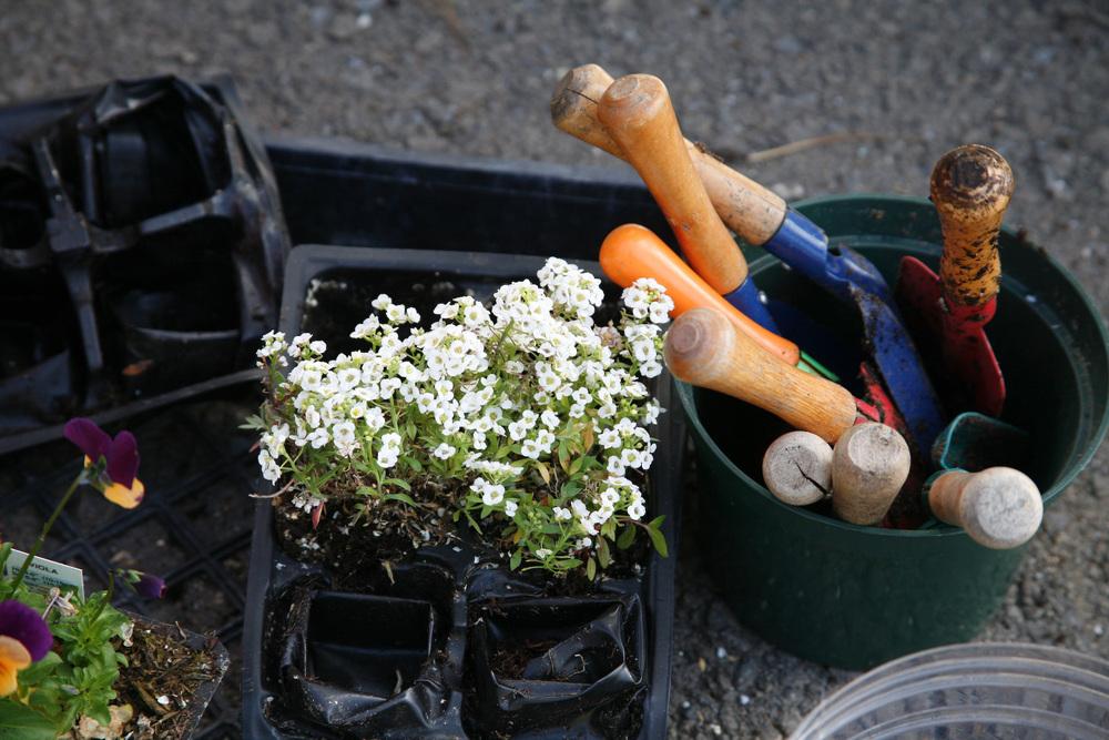 Gardening 2.jpg
