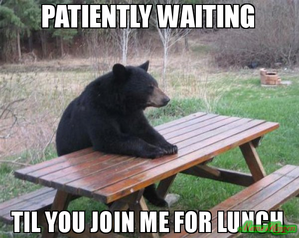 Patiently-waiting-til-you-join-me-for-lunchfrlss.jpg