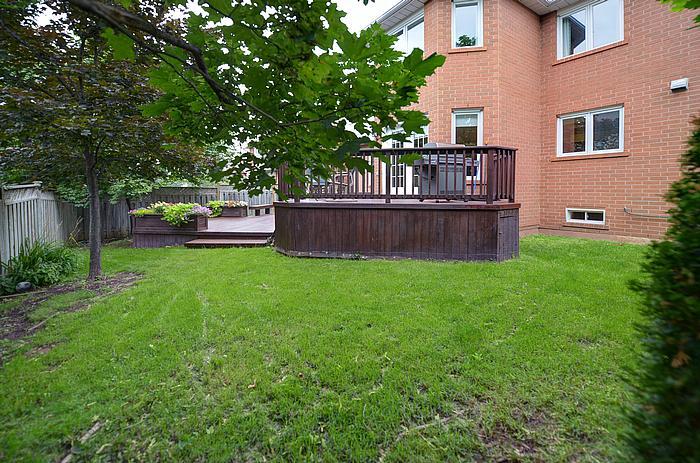 backyard_700.jpg