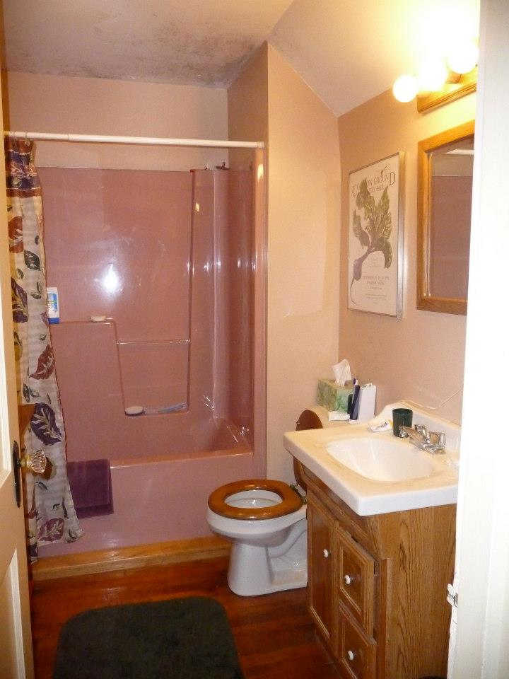 The Pink Bathroom Before Remodel