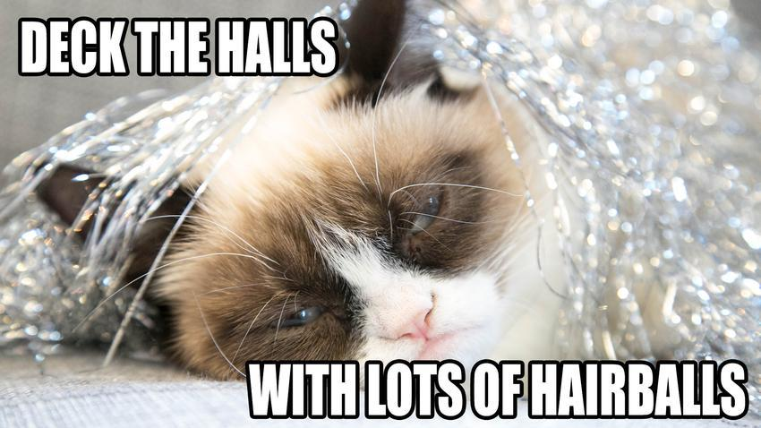 grumpy cat meme! christmas edition that's so gloss!