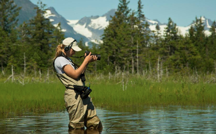 Summer 2014: Cordova Alaska