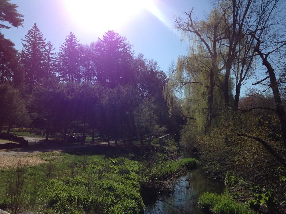 Vassar Springtime.