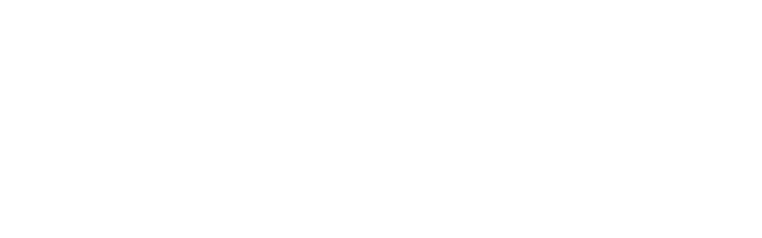 THE FLINT DEVELOPMENT CENTER