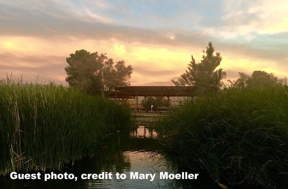 Mary Moeller2.jpg