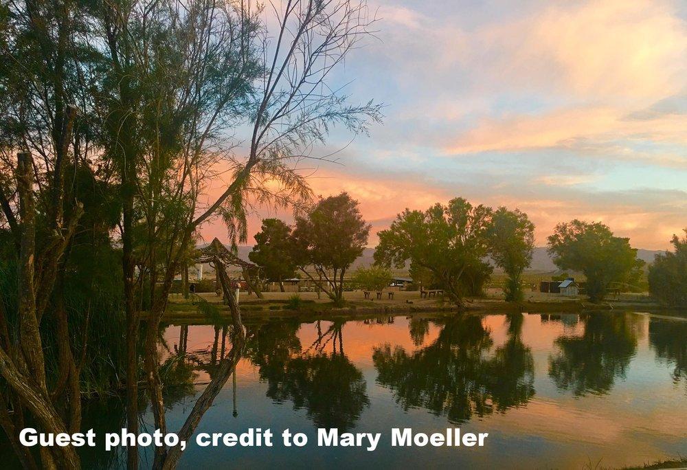 Mary Moeller1.jpg