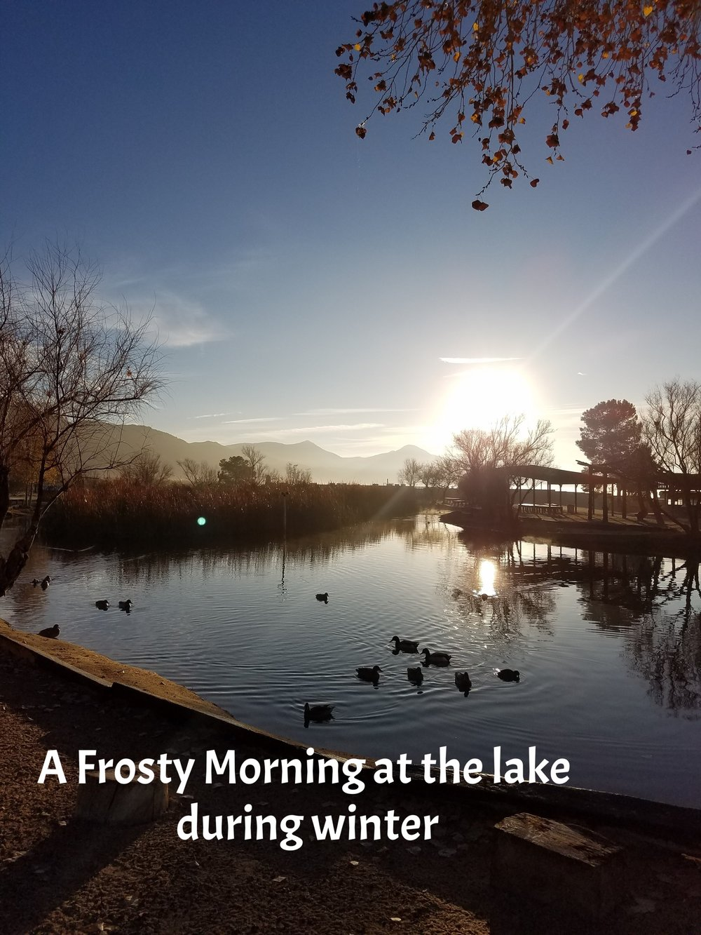 frosty lake am 2017.jpg